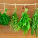 zoldfuszerek Zöldfűszerek
