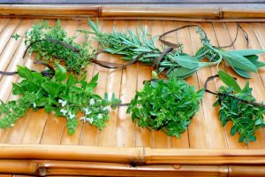 üvegekbe Fűszernövények