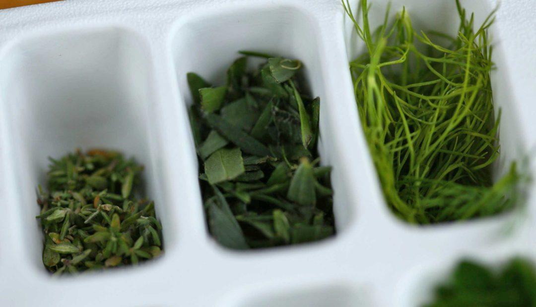 fagyasztva üvegekbe Fűszernövények