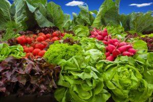 hajtatott zöldség