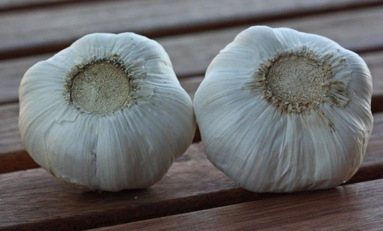garlic-from-china1-768x464
