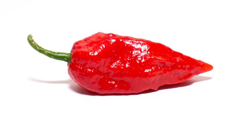 Ghost-Pepper-Header