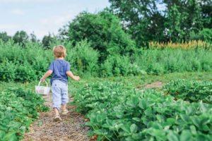 gardening gyerekbarát