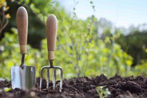 kertészkedők kalauza elhanyagolt